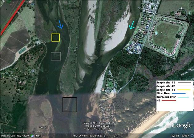 Keurbooms river study area seahorses